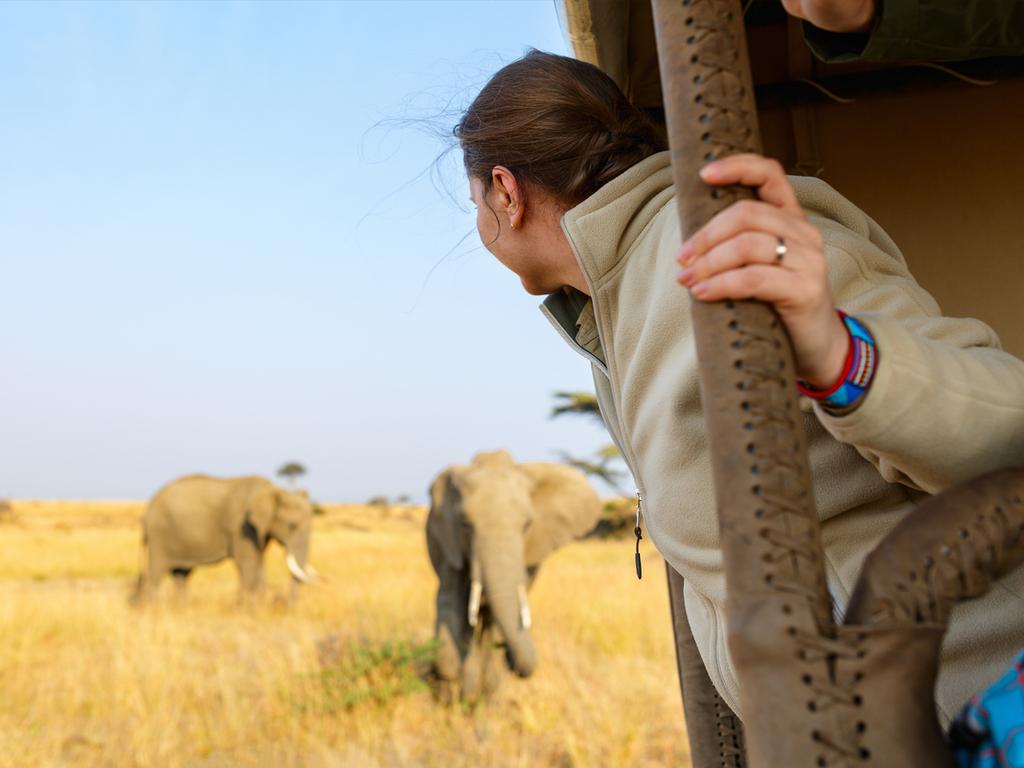 Masai Mara-Nationalreservat: vormittags und nachmittags Pirschfahrten