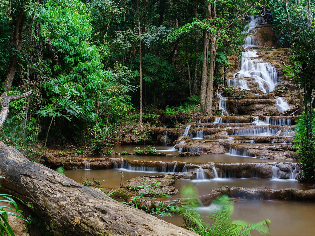 Ko Tha – Umphang – Mae Sot: Wanderung nach Palatha