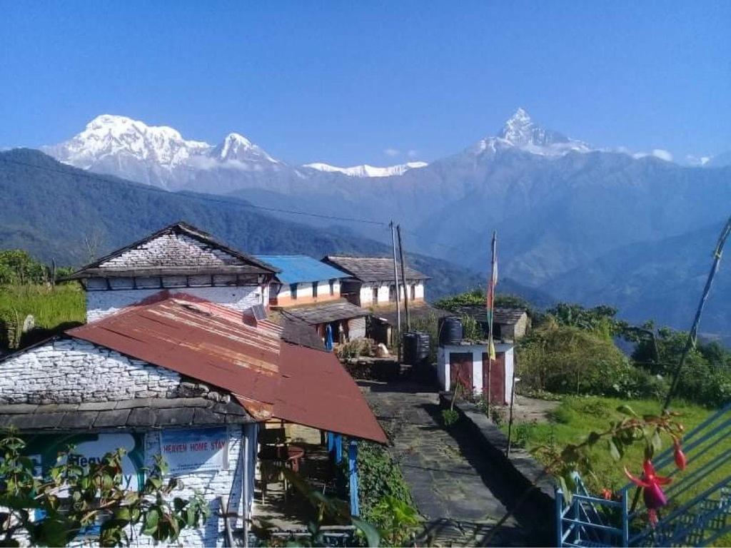 einfaches Gästehaus  in Dhampus