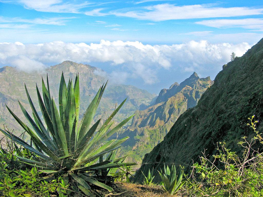 Ponta do Sol: Wanderung durch das Tal Chã das Pedras und Mittagessen bei einer Familie; zum Tal Ribeira de Torre