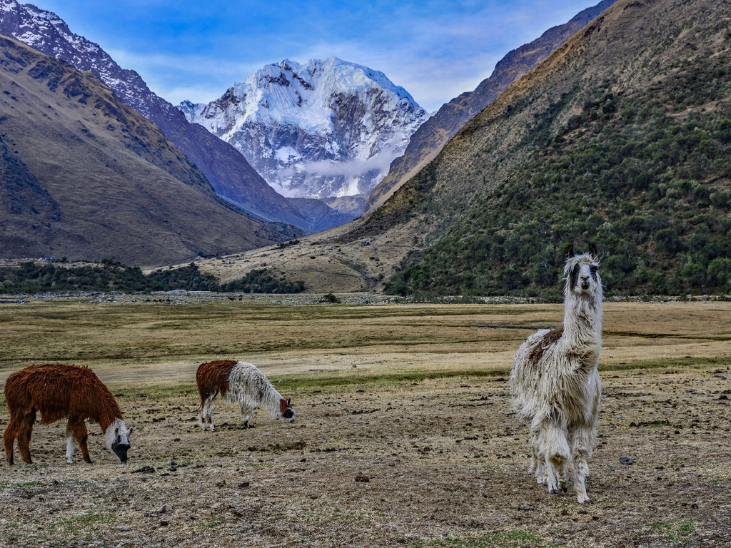 Cuzco – Start des Salkantay-Treks: Start des Trekkings