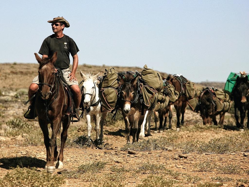 Windhoek – Auas-Berge: halbtägige Wanderung und Esel-Trekking